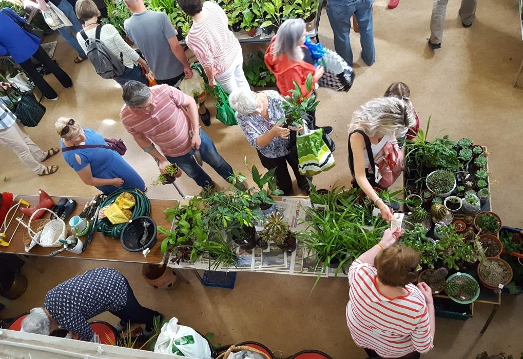 Plant Sale 2