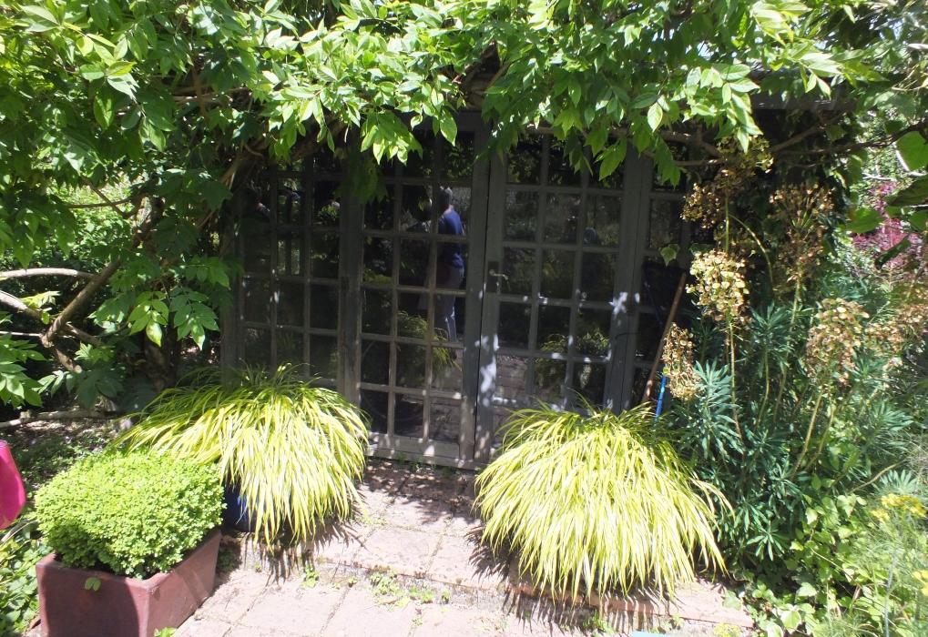 Andy McIndoe's garden 2019