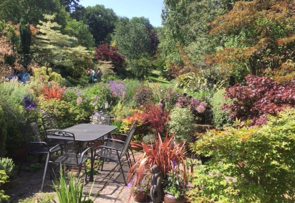Andy McIndoe garden Romsey trip