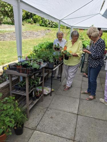 Customers at Jenny T's plant sale