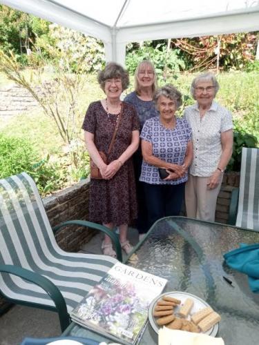 Jenny T's garden visitors