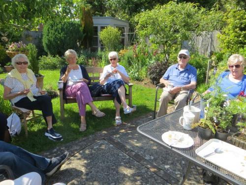 Marion's garden visitors June