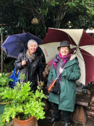 Rain? What rain? Hardy visitors enjoying Pat A's garden